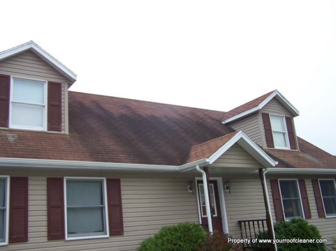 Roof Stain Removal Exterior Cleaning Contractors Photo